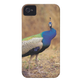 0 3 Case-Mate iPhone 4 CASE