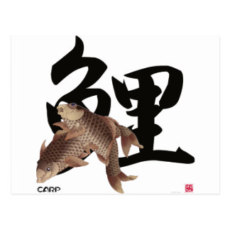 10009.CARP Japanese fish KOI Postcard