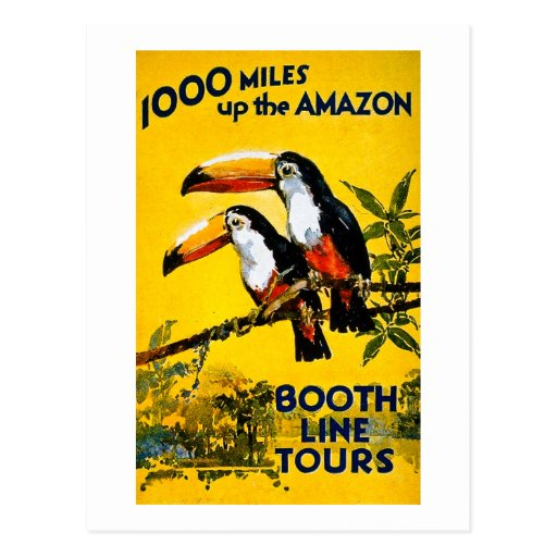 1000 Miles Up The Amazon Vintage Travel Poster Post Card