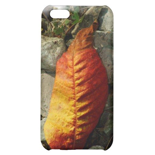 100309-411-APO AUTUMN iPhone 5C COVER