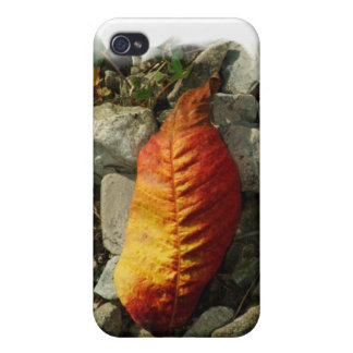 100309-411-APO AUTUMN COVER FOR iPhone 4