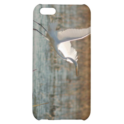 100810-29-APO COVER FOR iPhone 5C