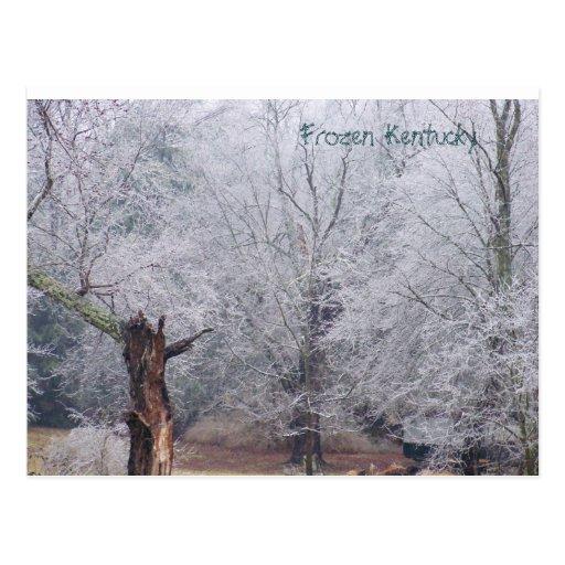 100_0275, Frozen Kentucky Post Card