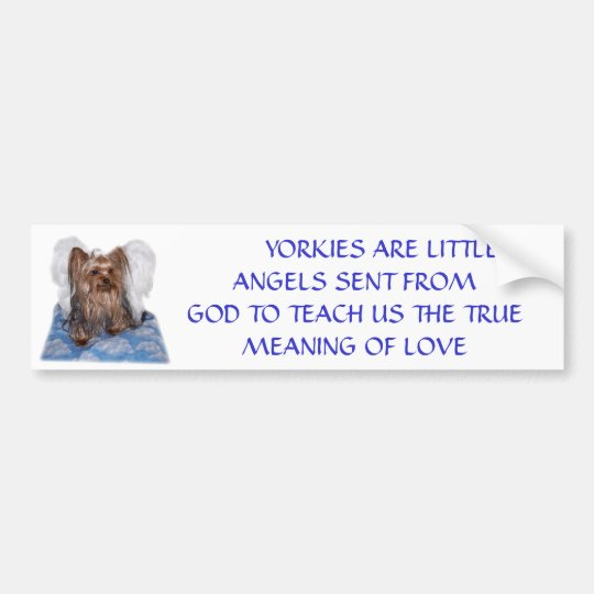 100_0580, YORKIES ARE LITTLE ANGELS SENT BUMPER STICKER