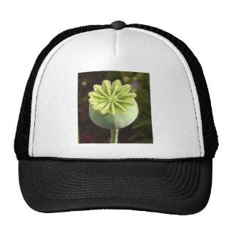 100 Flower Chakra n Chokuray Prints Mesh Hat
