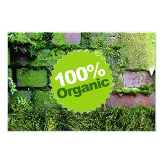 100% Organic Art Photo