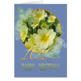 101st Birthday Primroses and blue Greeting Card