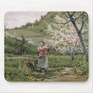 103-0066598/2 Spring Mouse Mat