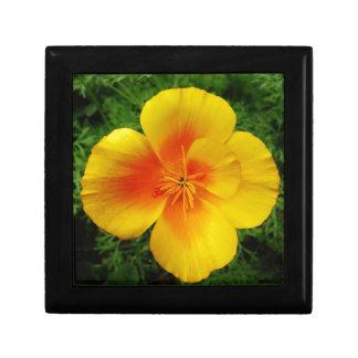 10440725_322100797946560_2256318108785012101_n.jpg gift box