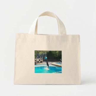 104_3686 - Seal Bag