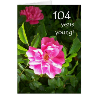 104th Birthday Card - Pink Roses