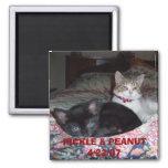 105_1036, PICKLE & PEANUT 4/22/07 REFRIGERATOR MAGNETS