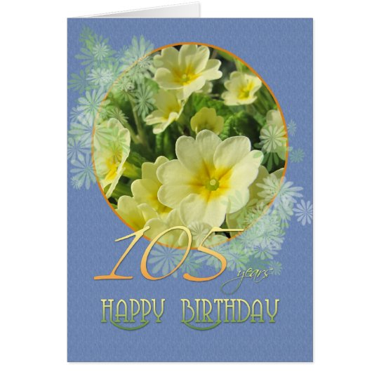105th Birthday Primroses and blue Card