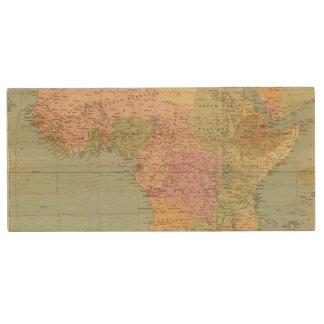 10708 Africa policy Wood USB Flash Drive