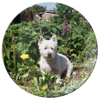 "10.75"" Decorative Porcelain Westie Plate"