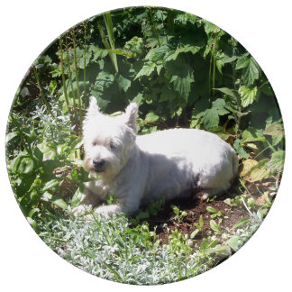 "10.75"" Decorative Porcelain Westie Plate (A)"