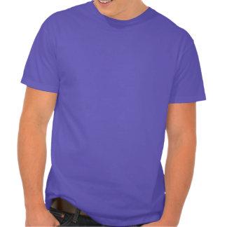 """10-96"": Hanes Nano T-Shirt (Color)"