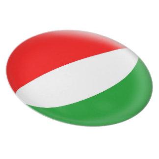 10 inch Plate - Hungary Hungarian flag