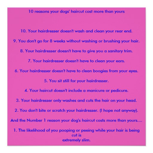 10 reasons your dogs' haircut cost more than yo... poster