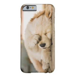 10 week old puppy rubbing its eyes barely there iPhone 6 case