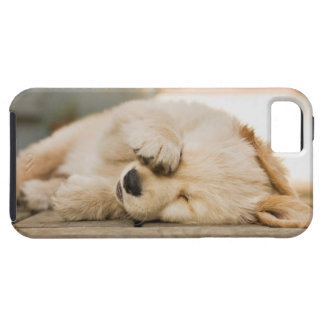 10 week old puppy rubbing its eyes iPhone 5 case