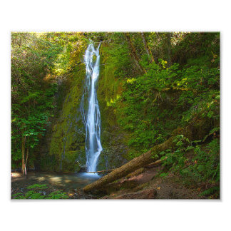 """10"""" x 8"""",Professional Photo Waterfall in forest"""