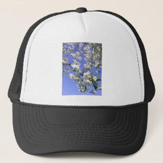 11053510_1600080120262832_4092270797372125567_n.jp trucker hat