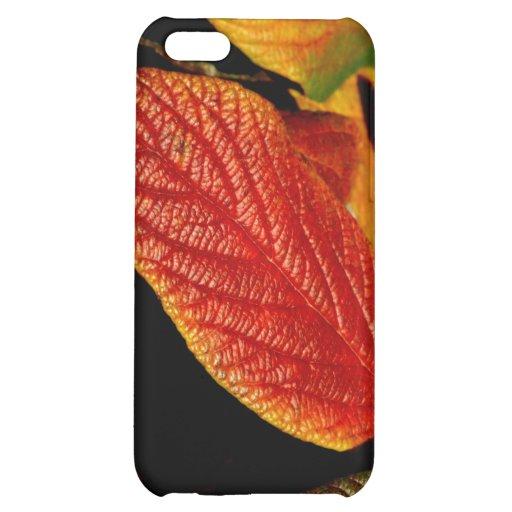 112209-103-APO iPhone 5C COVERS