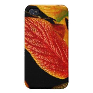 112209-103-APO iPhone 4/4S COVERS