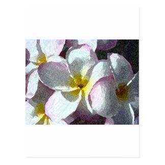 1188296266_470x353_hawaiian-flowers post card