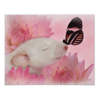 11x14 Butterfly Kisses matte canvas Poster