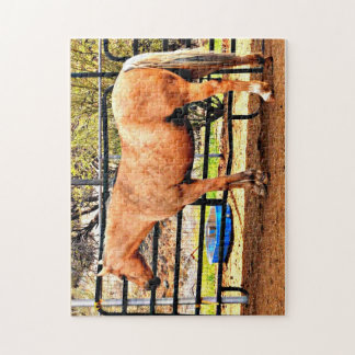 11x14 Photo Game Puzzle - Palomino Horse