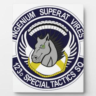 123 Special Tactics Squadron Display Plaque