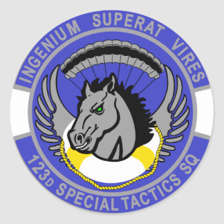 123d Special Tactics Squadron Round Sticker