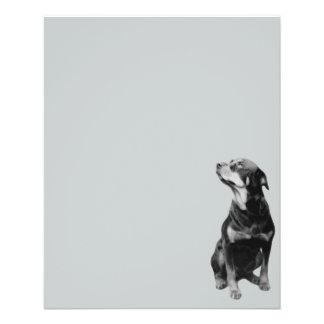 12642 rottweiler vector PETS DOGS ROTTI ROTTWEILER 11.5 Cm X 14 Cm Flyer