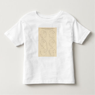 127 Proportion areas in farms Toddler T-Shirt