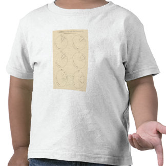 127 Proportion areas in farms Tee Shirt