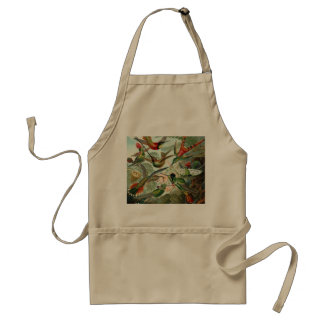 12 american humming birds breeds painted drawn aprons