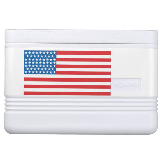 12 can cooler American Flag Design Front & Back Igloo Cool Box