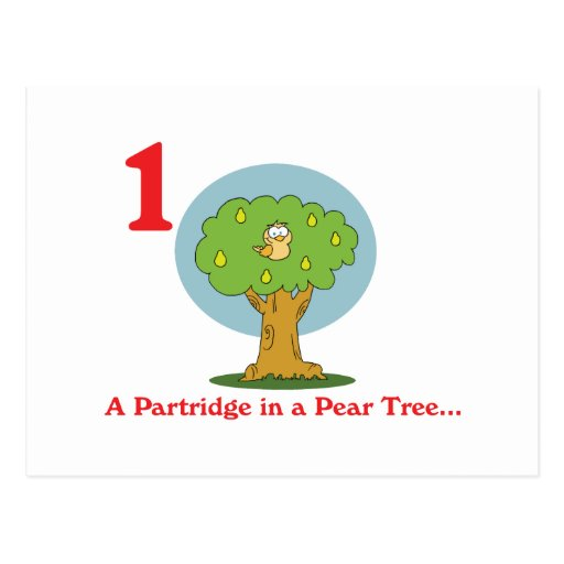 12 days partridge in a pear tree post card