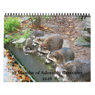 12 Months of Adorable Raccoons Calendar 2016