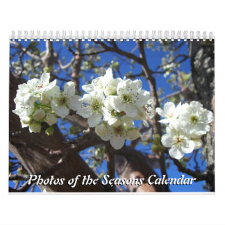 12 Months of Photos of the Seasons, 10th Edition Calendars