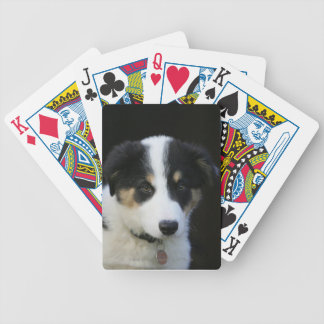 12 Week Old Border Collie Puppy Bicycle Playing Cards