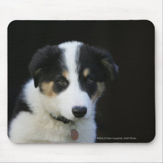 12 Week Old Border Collie Puppy Mouse Mat