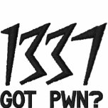 1337, Got Pwn?