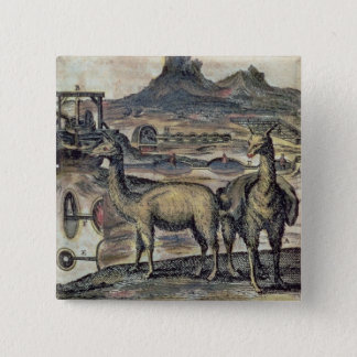 137-0627924 Illustration from a history of Peru sh 15 Cm Square Badge
