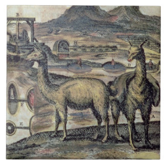 137-0627924 Illustration from a history of Peru sh Tile
