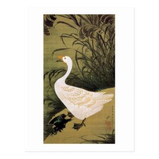 13. 芦鵞図, 若冲 Reed & Goose, Jakuchū, Japan Art Postcard