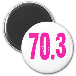13 1 26 2 70 3 140 6 REFRIGERATOR MAGNETS