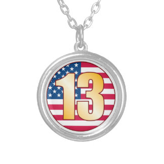 13 USA Gold Silver Plated Necklace